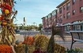 Best Cities to Live in in America - Elk River No 30