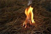 Grass Fire Increase in Elk River