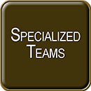 Specialized Teams.png