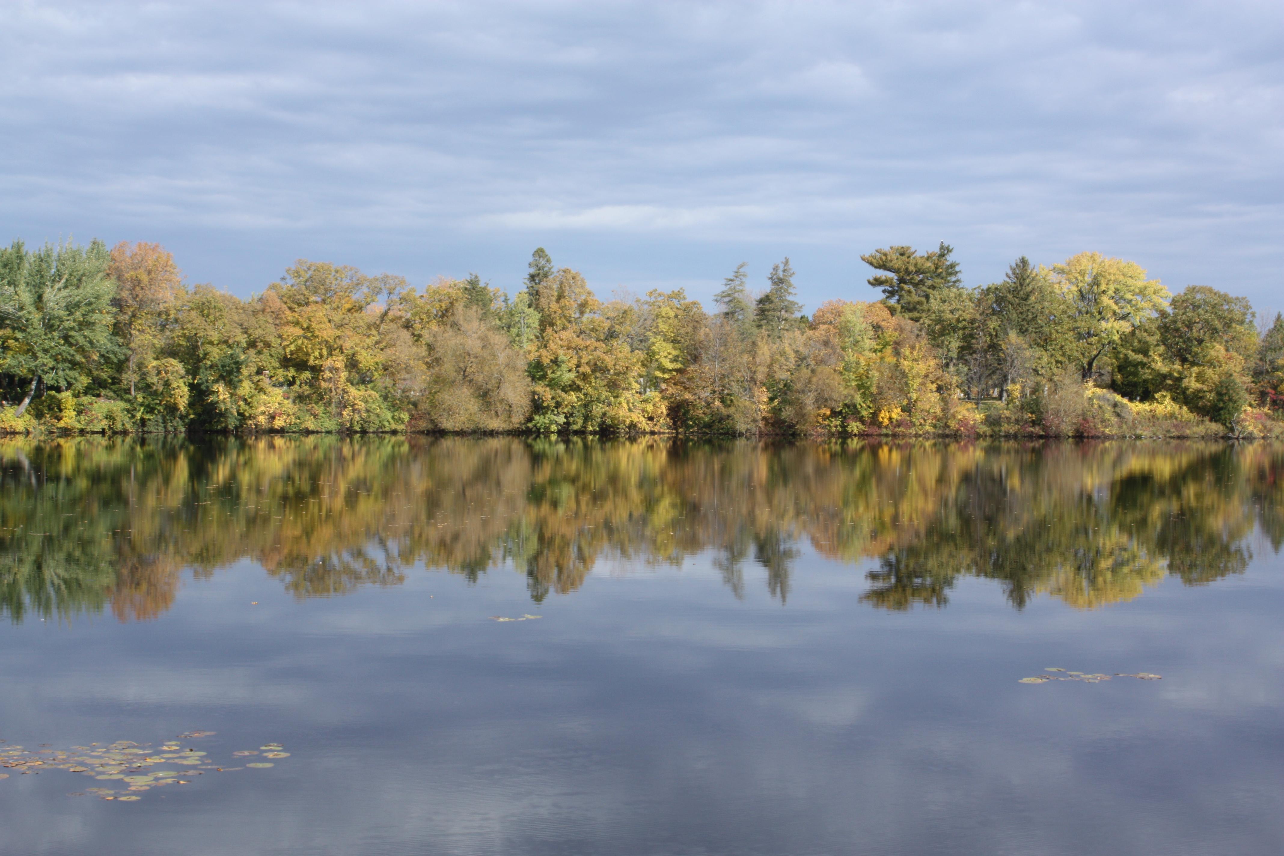 Lake Orono